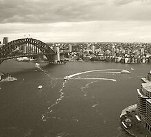 Sydney icons aerial by Sara Lamond