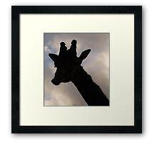 Silhouette Framed Print