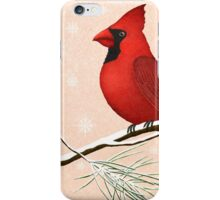 american red cardinal winter version :) iPhone Case/Skin