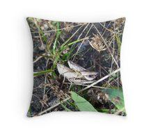 cricket love Throw Pillow
