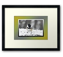 Feast Time! Framed Print