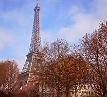Tour Eiffel in Fall by Austen Risolvato