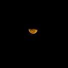 Under the Moon by Ferguson