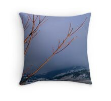 Winter Arrives  Throw Pillow
