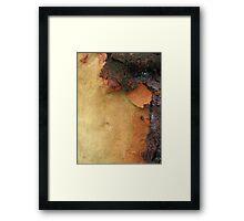 Coloured Bark Framed Print