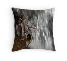 Water and Ice Throw Pillow