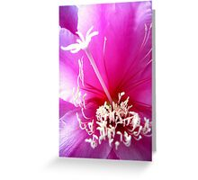 Pink Orchid Cactus Greeting Card
