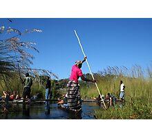 okavango delta Photographic Print