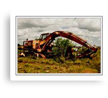 No more Digging this Year Canvas Print