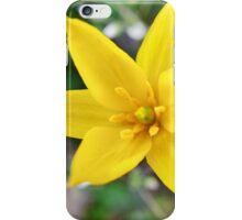 Wild yellow flower. iPhone Case/Skin