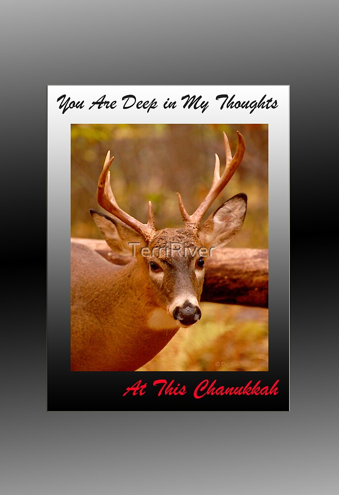 Deep Thoughts Chanukkah (holiday card) by TerriRiver