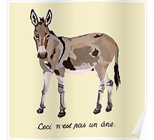 This is not a donkey Poster