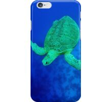 sea green turtle iPhone Case/Skin