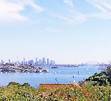 A View From Rose Bay by John Karamanos