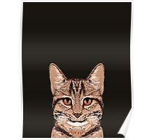 Ripley - Tabby cat gifts for cat lovers and cat lady gift ideas. Tabby cat owner gifts Poster