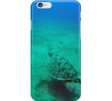 green sea turtle (Chelonia mydas)  iPhone Case/Skin
