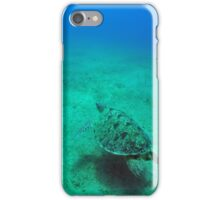 green sea turtle (Chelonia mydas)  iPhone Case/Skin