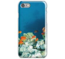 coral reef and tropical fish iPhone Case/Skin