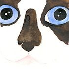 Curious Big eyed Siamese by CCallahan