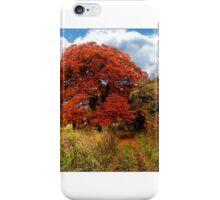 Beautiful Autumn Colours iPhone Case/Skin