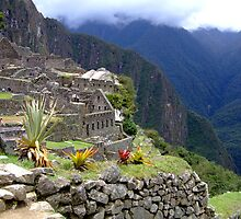 Machu Picchu, Peru, South America by Maureen Smith