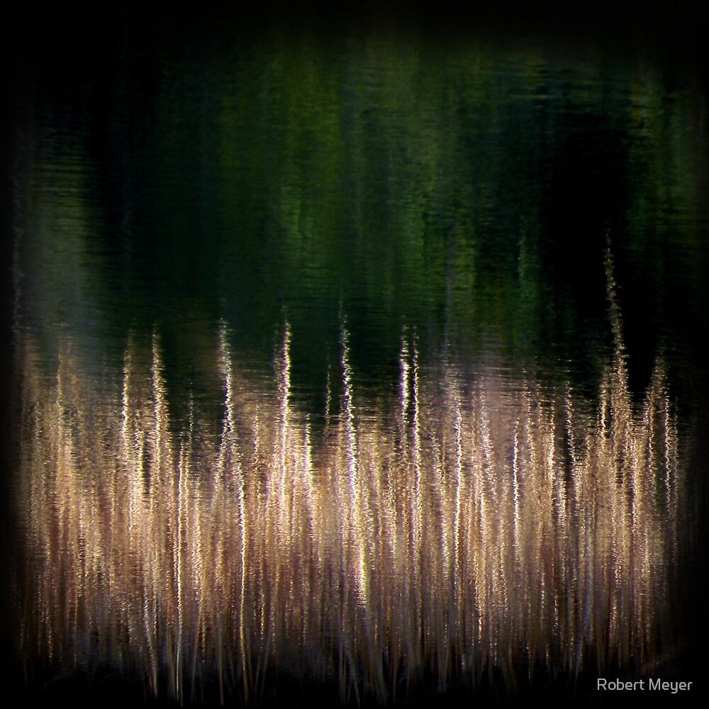 Ripple by Robert Meyer