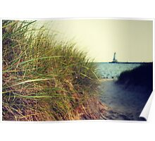Lake Michigan dune grass Poster