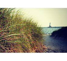 Lake Michigan dune grass Photographic Print