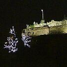 Edinburgh Castle at Christmas by Steven McEwan