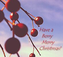 Berry Merry Christmas message by Shellibean1162