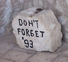 Don't Forget '93 by katewest