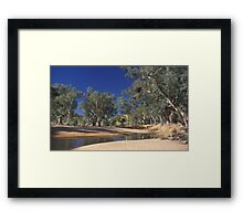 Waterhole in the outback Framed Print