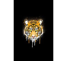 Graffiti Tiger Photographic Print