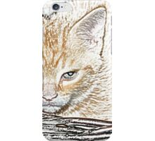 Grumpy Kitten D iPhone Case/Skin