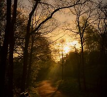 Take Nature with you II by J. Danion