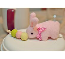Bunny Collection #10 - a bunny and dango rice balls on a stick Photographic Print