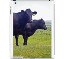 Cley Cows Too A iPad Case/Skin