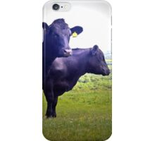 Cley Cows Too B iPhone Case/Skin