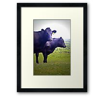 Cley Cows Too B Framed Print