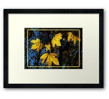 Golden Gifts Framed Print