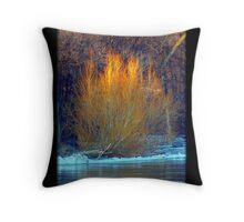 Amber Gold Throw Pillow