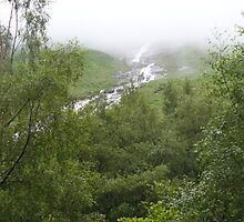 Riverfall by Catcha