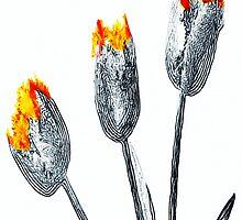 Tulips by Rafael Salazar