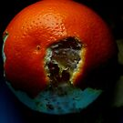 Orange. by Clare Bentham