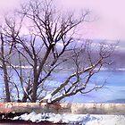 River View by Nadya Johnson
