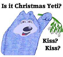 Is it christmas yet Yeti? Photographic Print