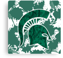 Michigan State Canvas Print