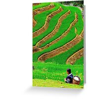 The Woman in the Terrace Field - Sa Pa, Vietnam. Greeting Card