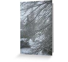 pinoaks winter blast Greeting Card