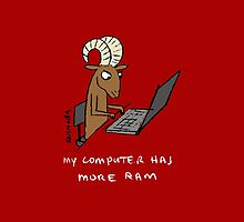 My computer has more RAM by David Barneda